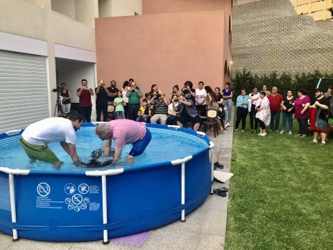 Ջուրի Մկրտութիւն
